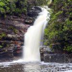 シドニー観光でおすすめランキングTOP5の国立公園は?