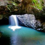2016年ゴールドコースト観光でおすすめランキングのTOP4国立公園は?