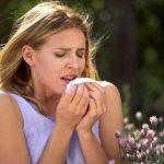 オーストラリアは花粉症対策が必要?杉やブタクサ花粉の時期や少ない地域は?