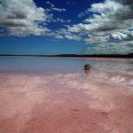アデレード観光で訪れたいピンクの湖は?場所やアクセス方法は?