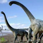 オーストラリアで発見された恐竜の化石の新種は?名前の理由や特徴は?